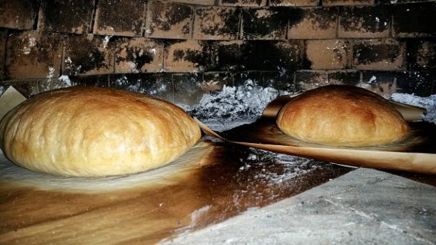 wfo bread_Ssi.JPG