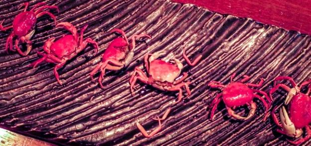 crab platePSi.JPG